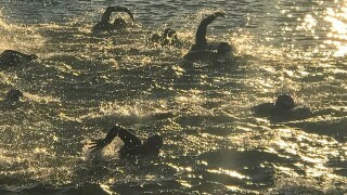 Hundreds of swimmers cross the Ohio River