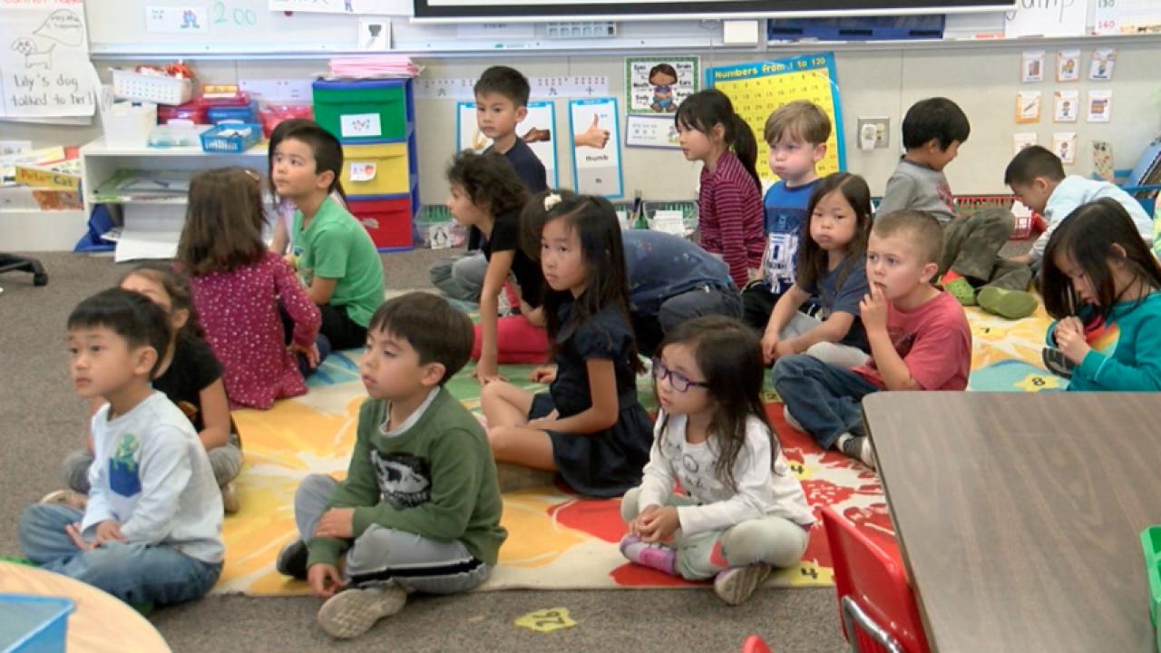 school mandarin immersion