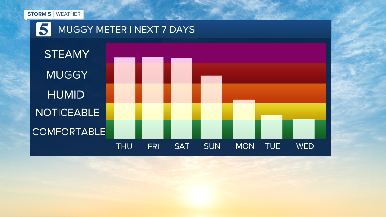 7 DAY MUGGY METER AM.png