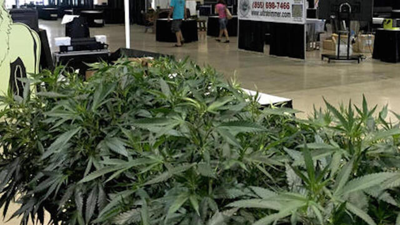 First-ever marijuana growers' fair opens in Oregon