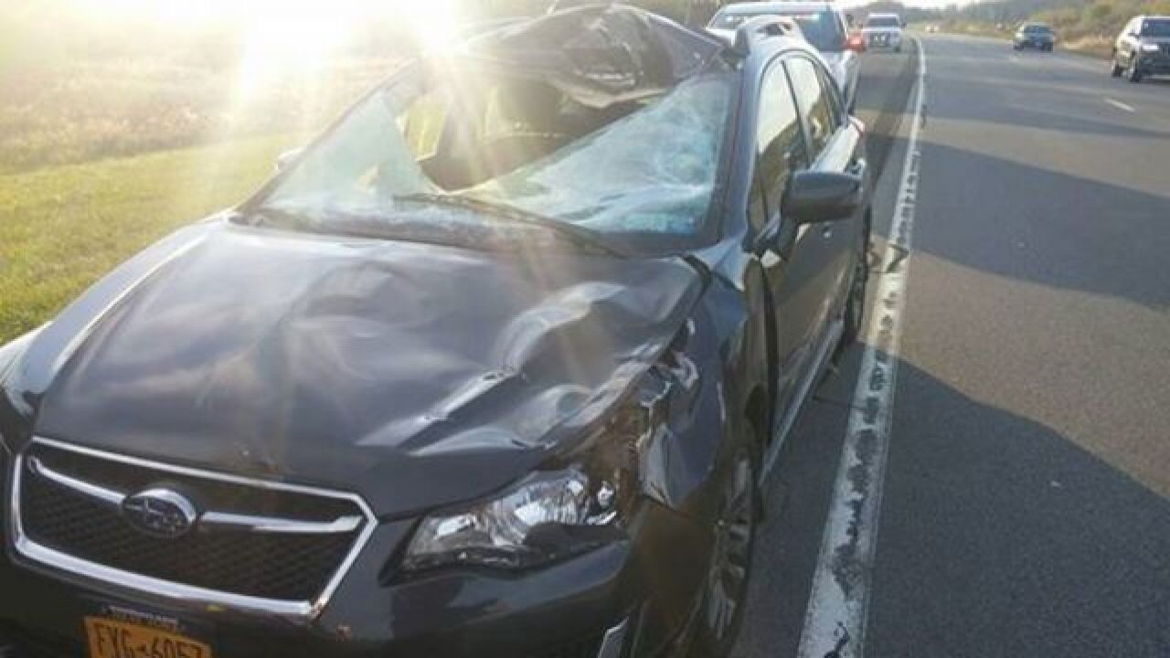 Crash with deer leaves gaping hole in car