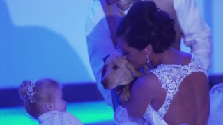 Groom surprises bride with puppy at wedding