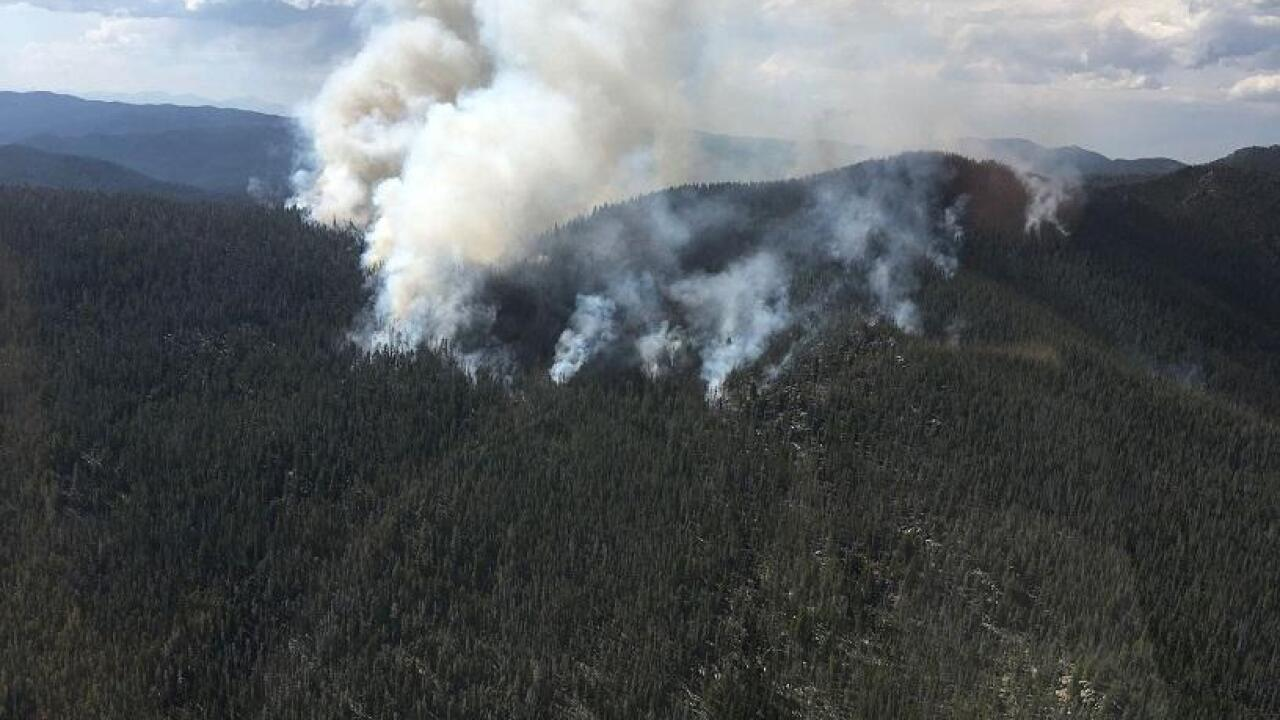 Wildfire near Whitehall now 14 percent contained