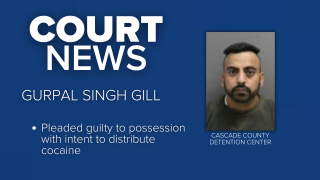 Gurpal Singh Gill