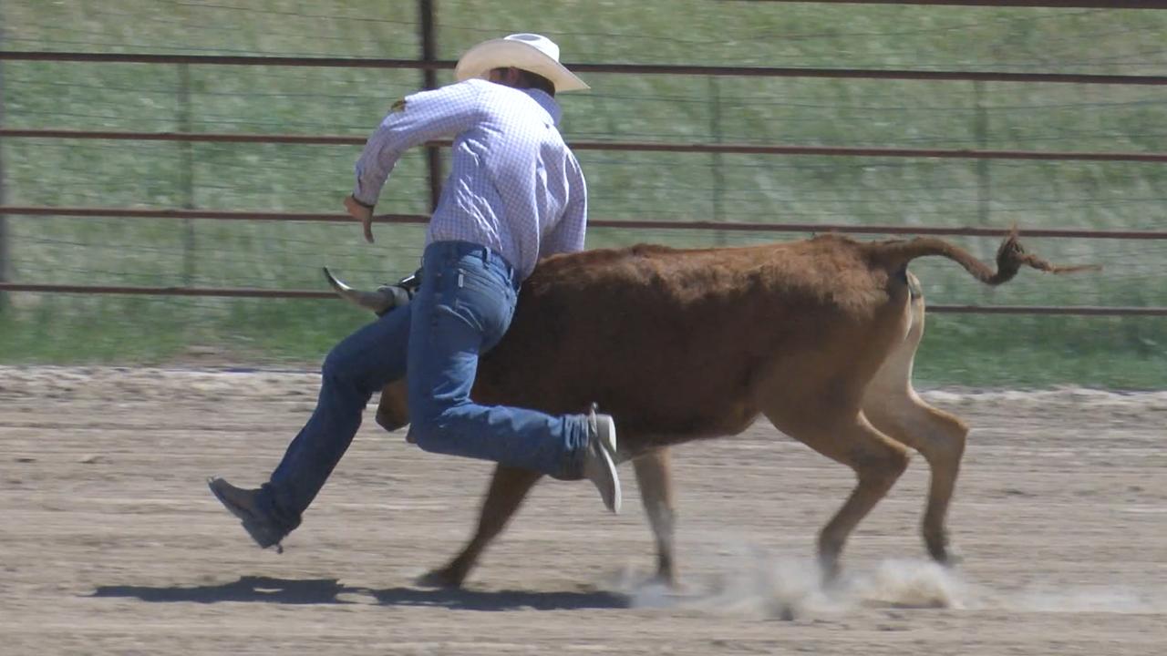 Montana State Rodeo's Jaret Whitman