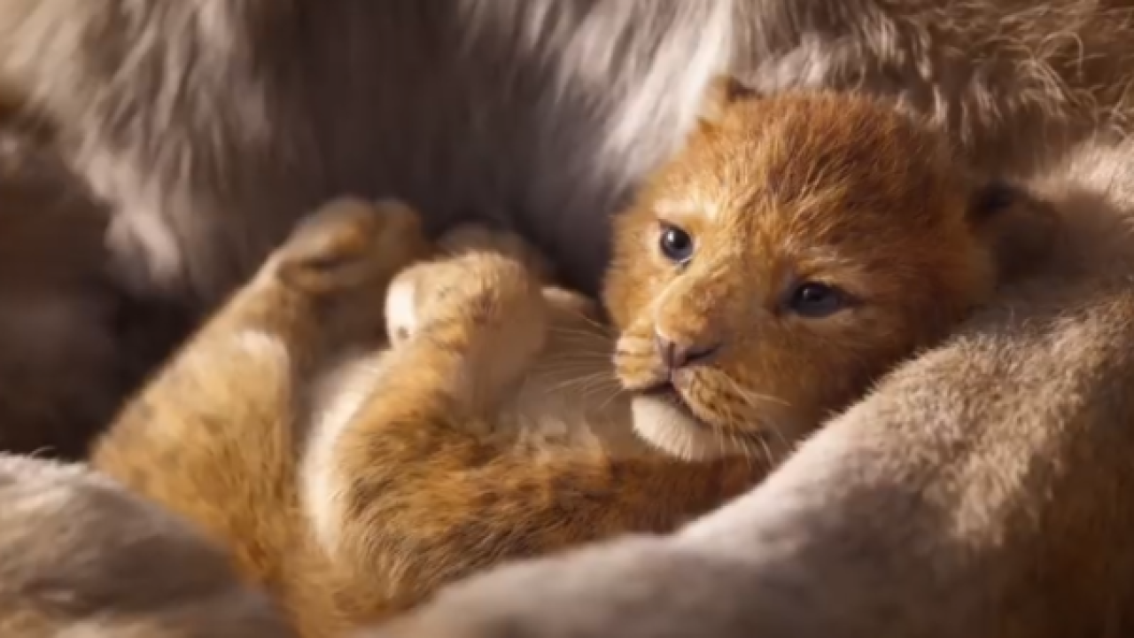 First look trailer for Disney's live-action Lion King released