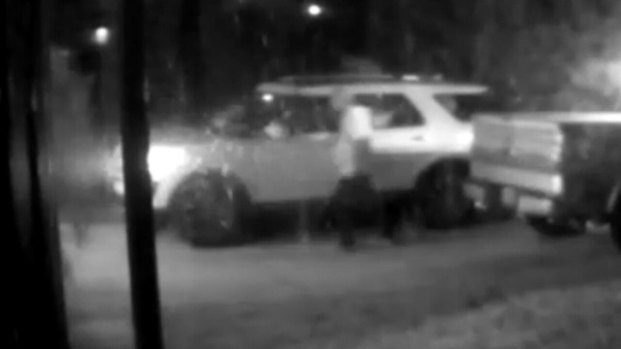 Vehicle theft Cape Coral 1-12-19.jpg