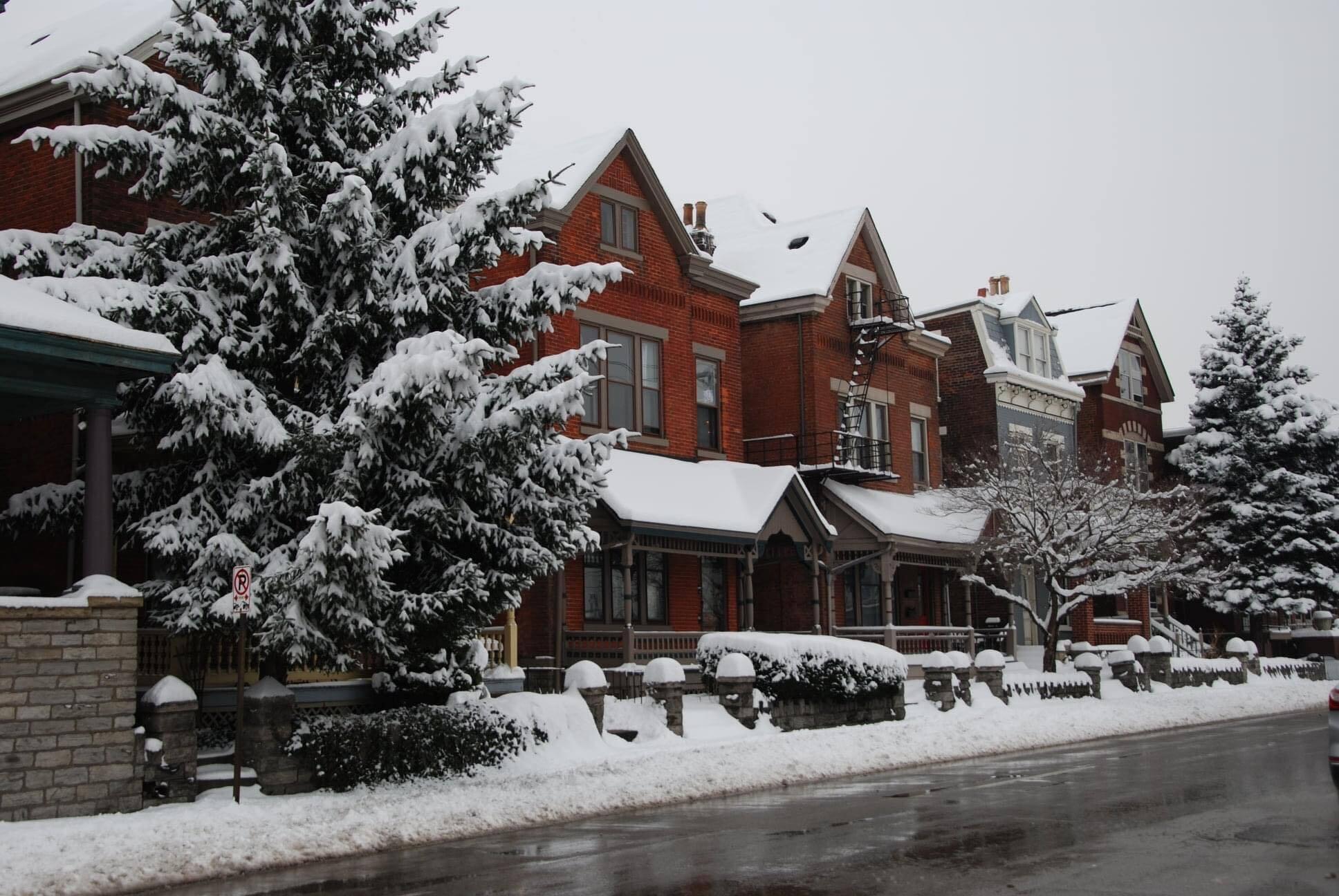 covington-snow-angie-coyle.jpg