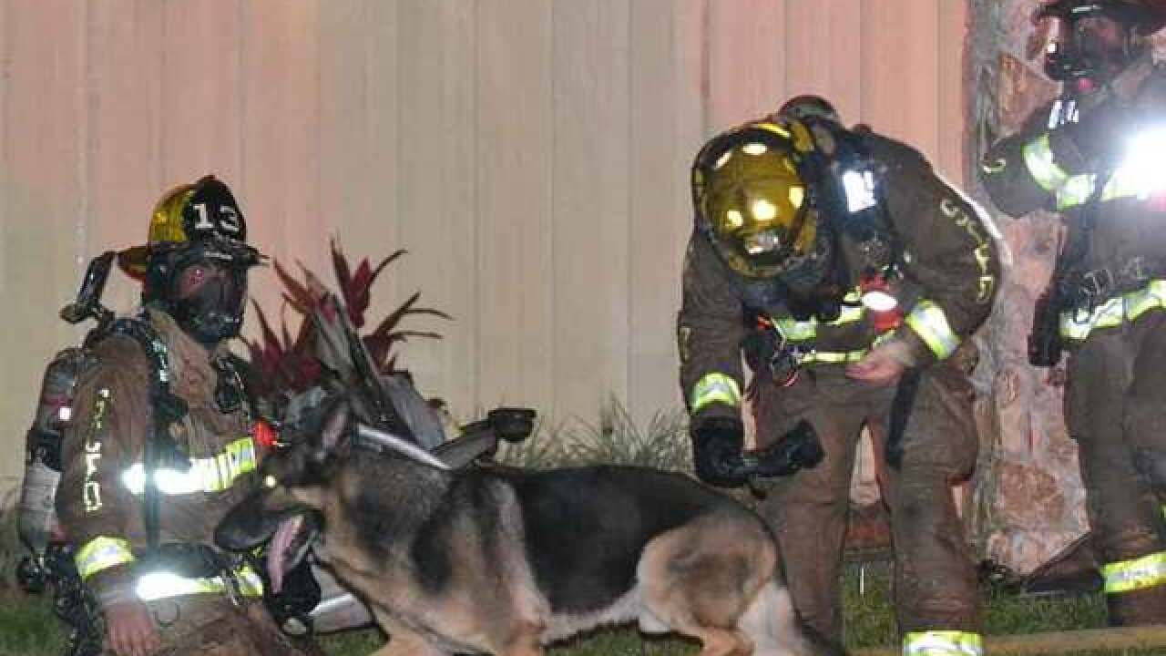 Dog helps rescue children from burning home