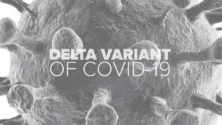 delta covid