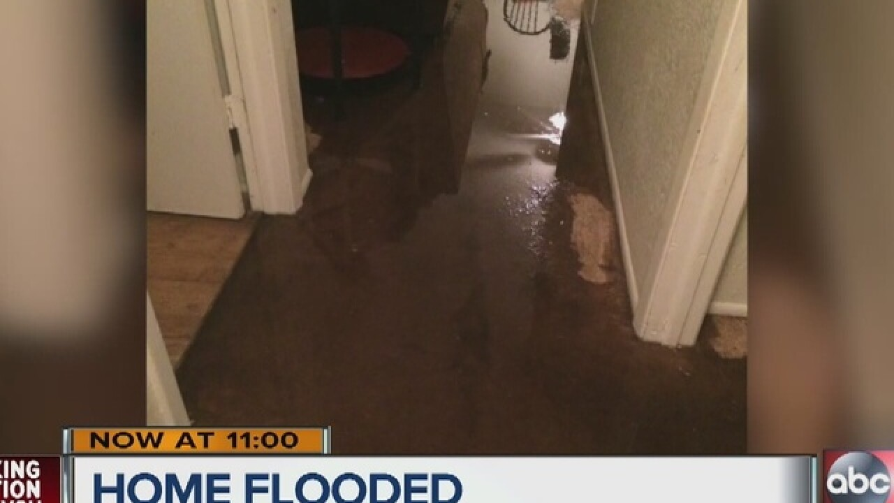 Flooding forces Tampa family out of apartment