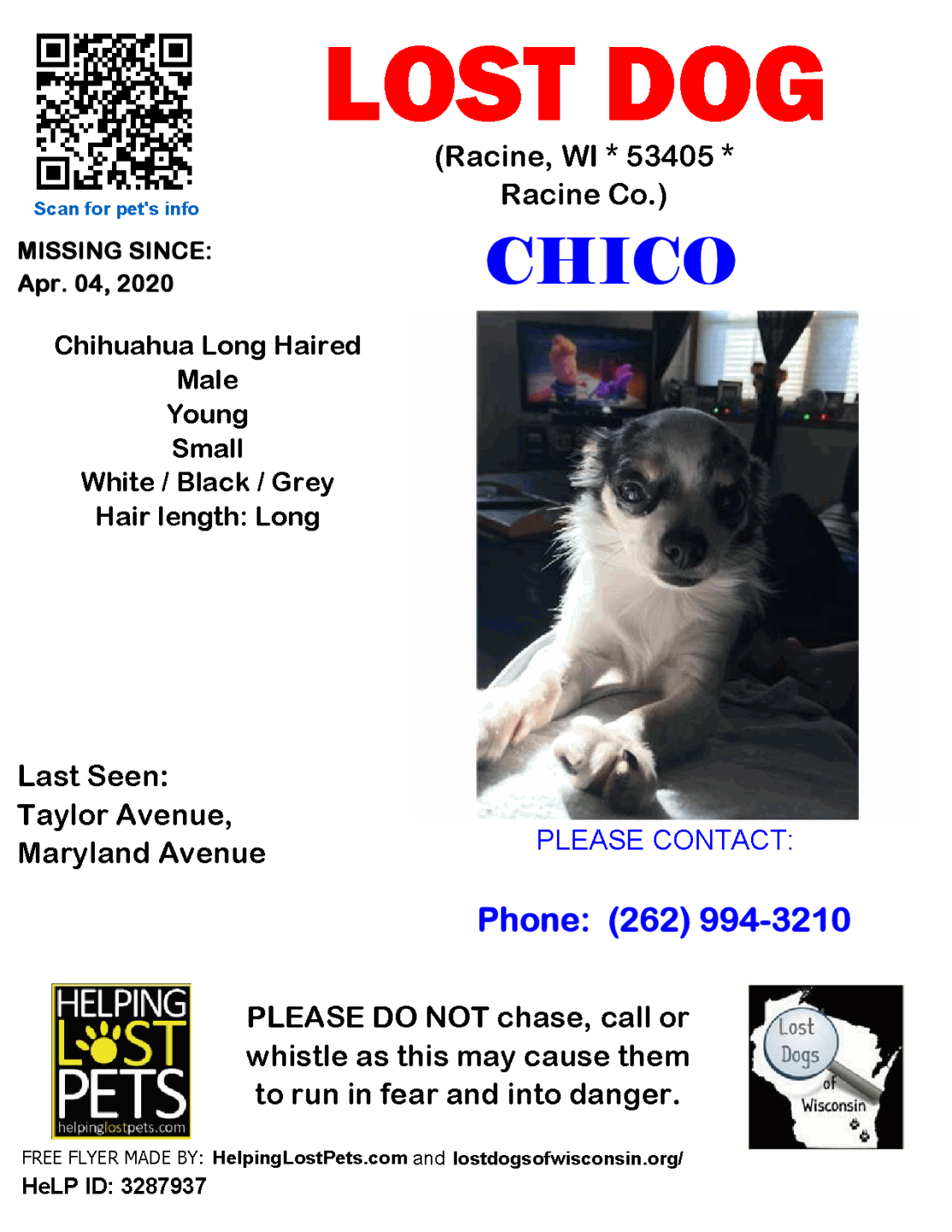 040420 Chico LH Chihuahua Young.png