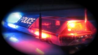 Police LIghts (FILE)