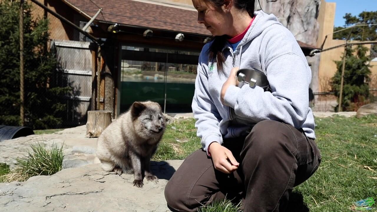 zoo worker.jpg