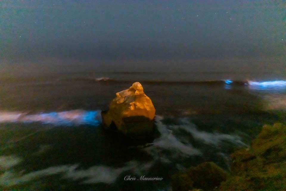 Chris R. Mannerino red tide weather watcher_5.jpg