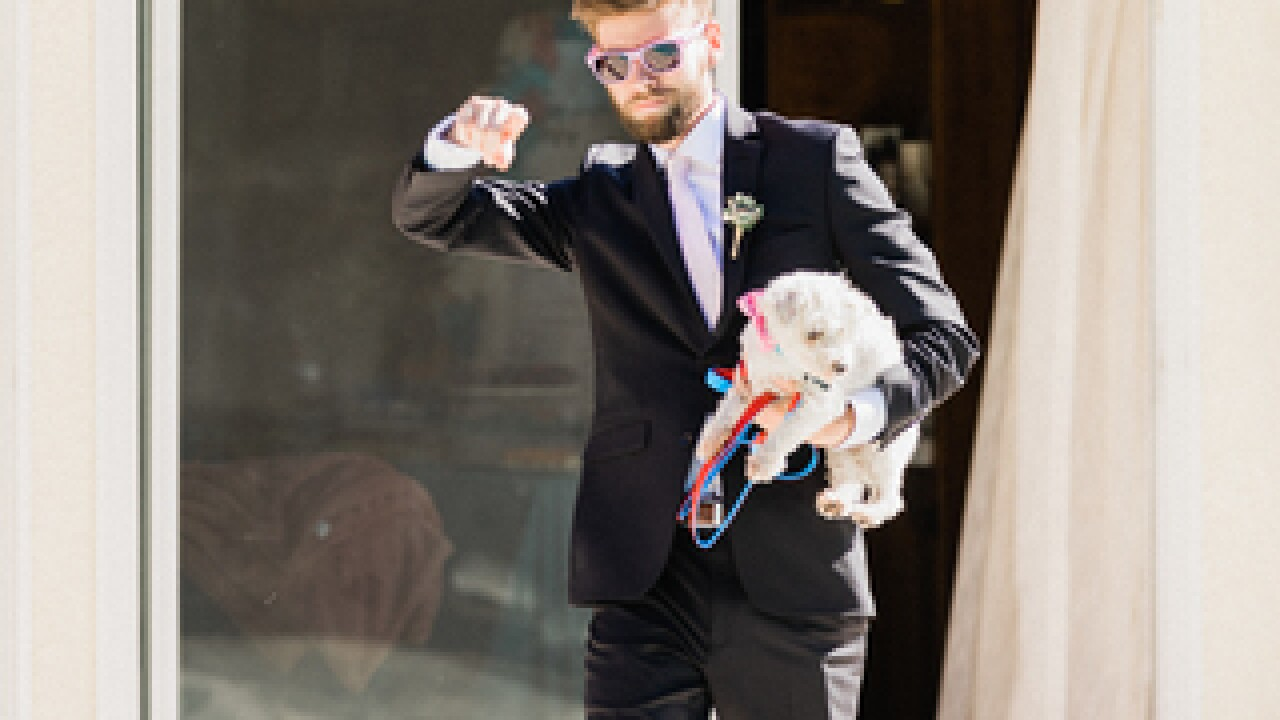 Newlyweds give up gifts for shelter animals