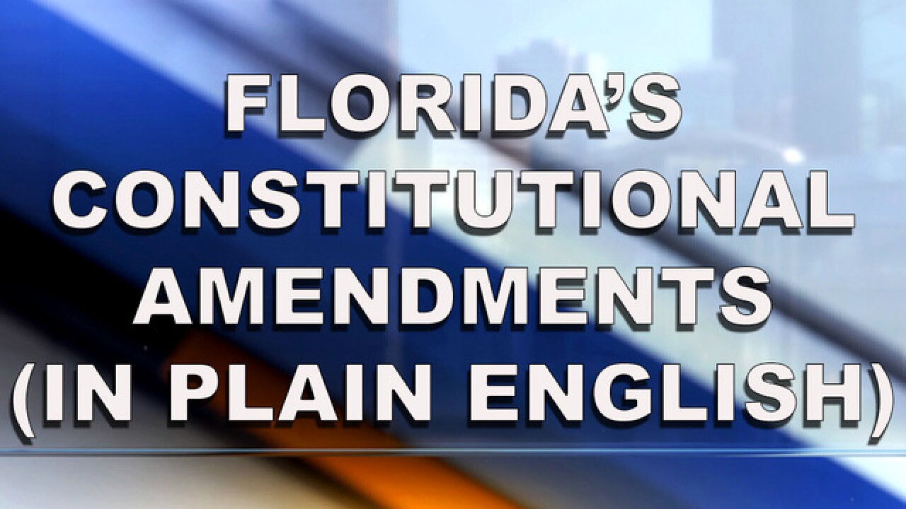 Your Guide To Floridas Constitutional Amendments In Plain English