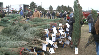 Wahmhoff Farms sends Christmas trees to military troops around the United States