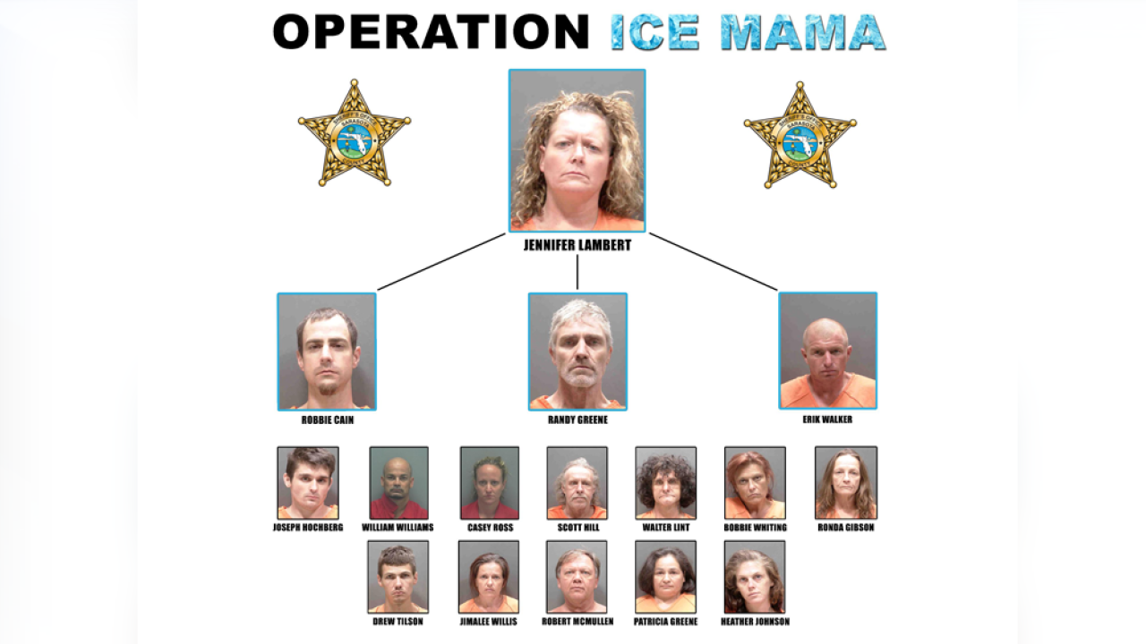 operation-ice-mama.png