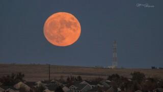 Kara Marcus full Halloween moon