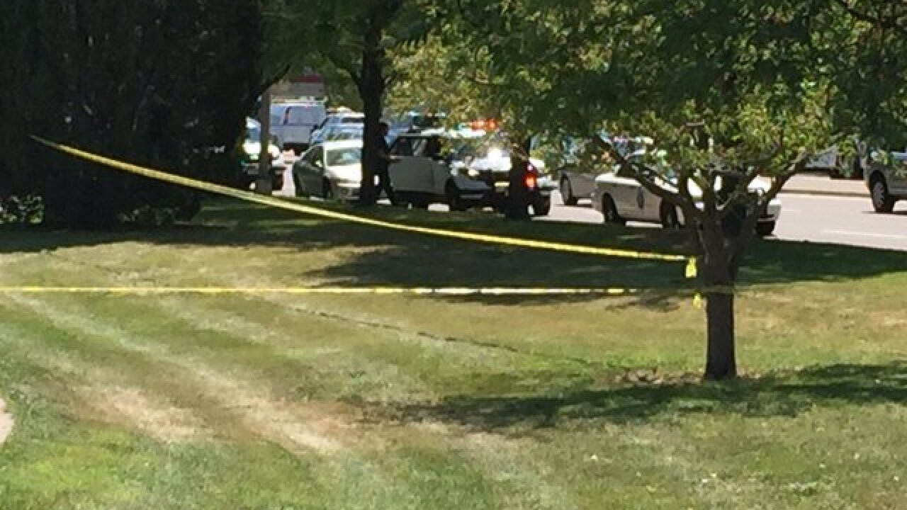 Woman stabbed in Denver park, Police investigate area