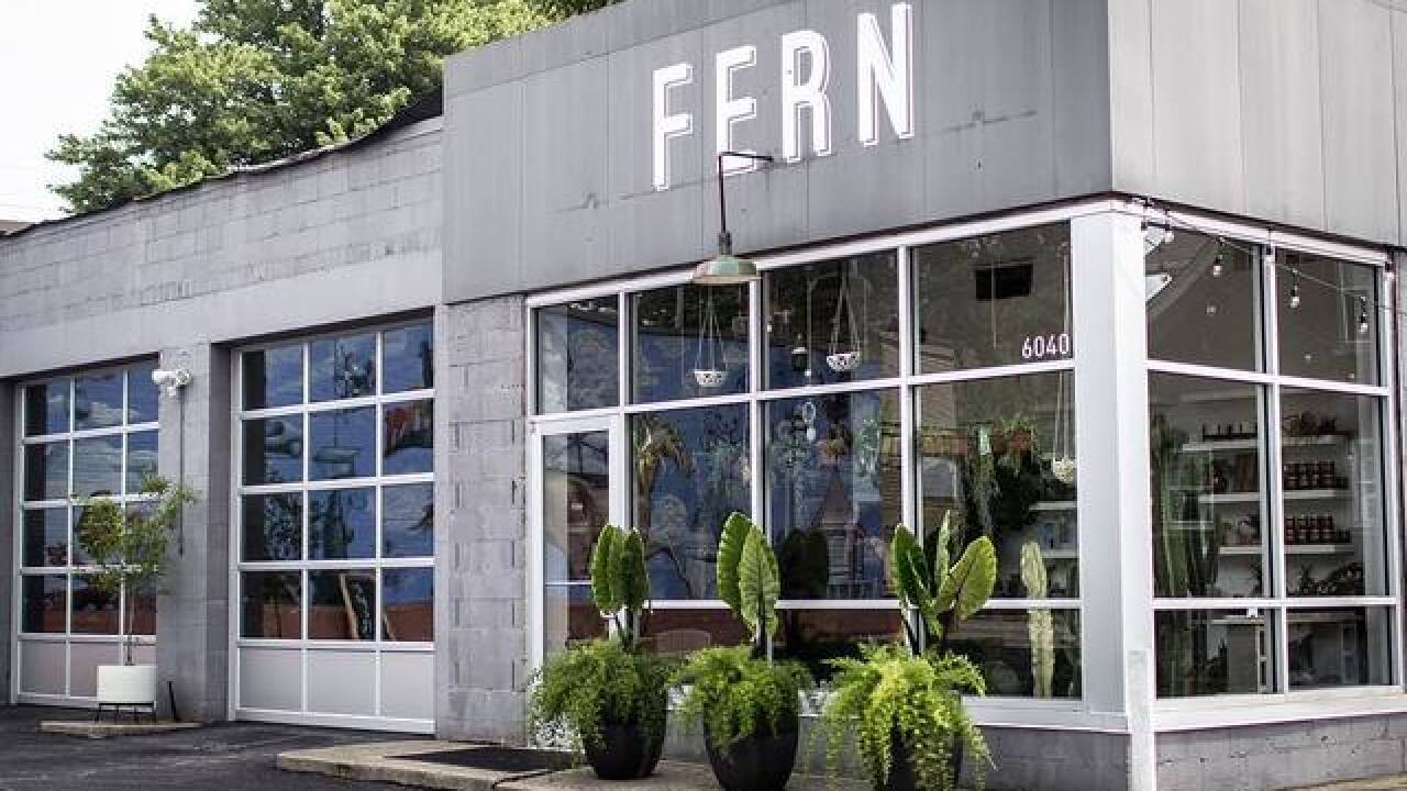 Swoon-worthy Fern, a College Hill Instagram success, has become a destination in its own right