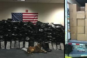 FHP K-9 sniffs out 624 pounds of marijuana in Orlando