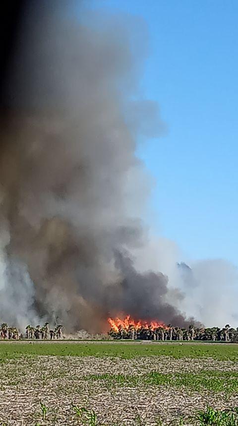 Calallen-Robstown fire 2 01062020.jpg