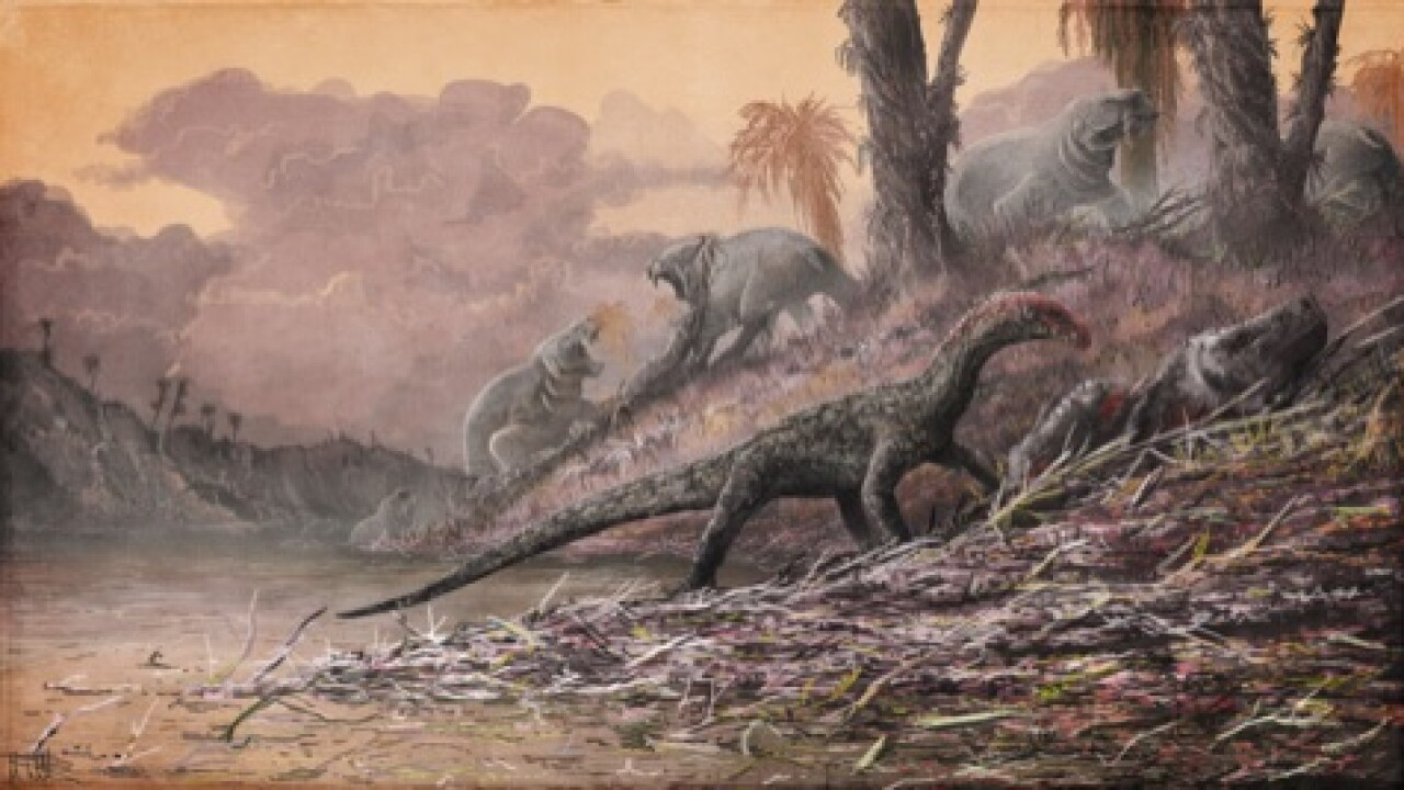 Virginia Tech scientists discover croc-like dinosaur cousin