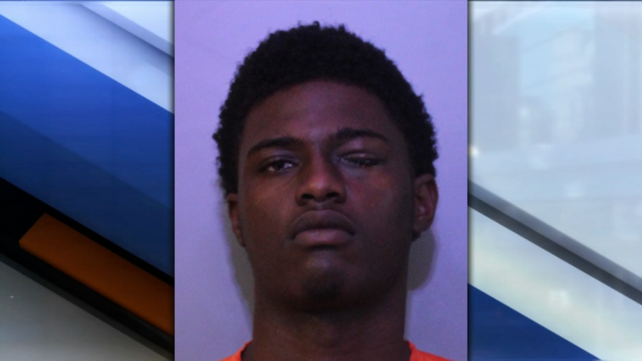 Polk Co  man arrested after punching, attempting to choke police dog