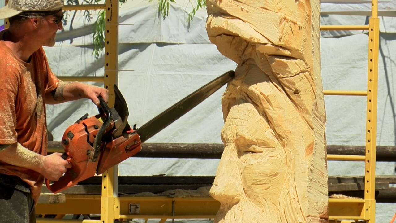 Professionals carve away at Ronan's 2nd Chainsaw Carving Rendezvous & Auction