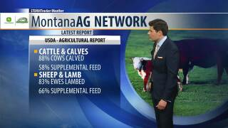 Montana Ag Network Weather: May 9th