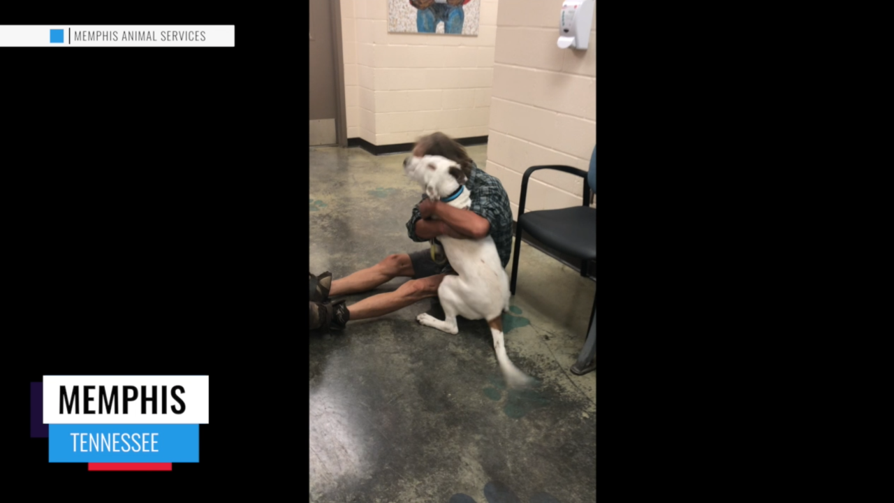 A homeless man in Tennessee lost his dog. Two weeks later, the best friends had an emotional reunion