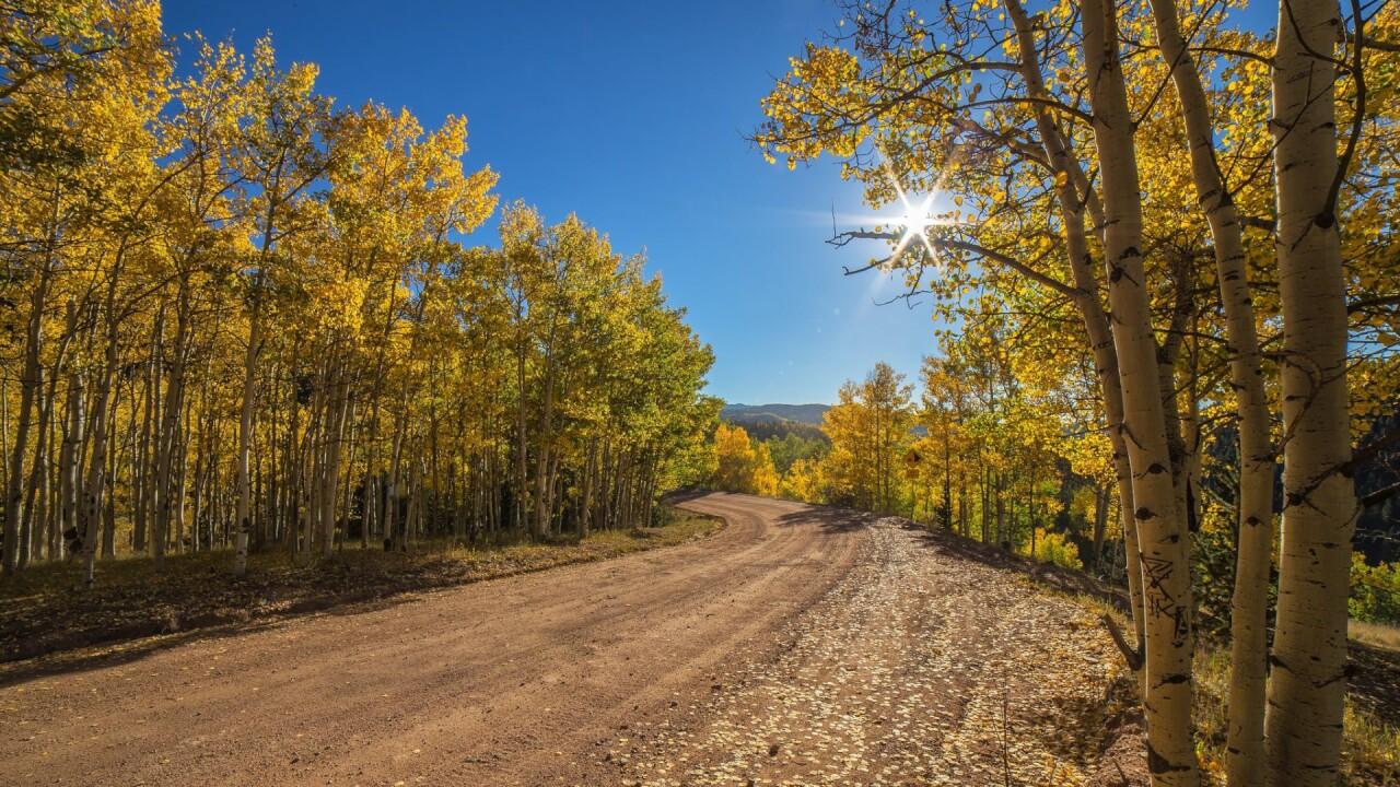 Gold Camp Road Bruce Hausknecht 1.jpg