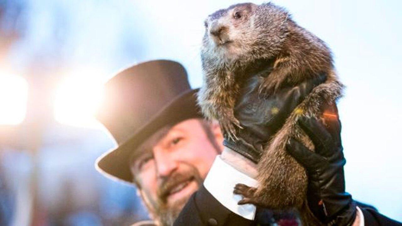 WPTV Punxsutawney Phil Groundhog Day