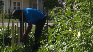 Lorain city church starts urban garden for community meals and unity