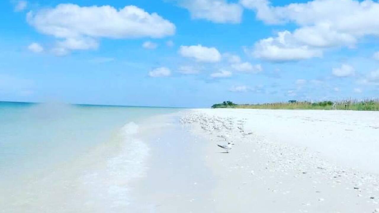 Keewaydin Island.jpg