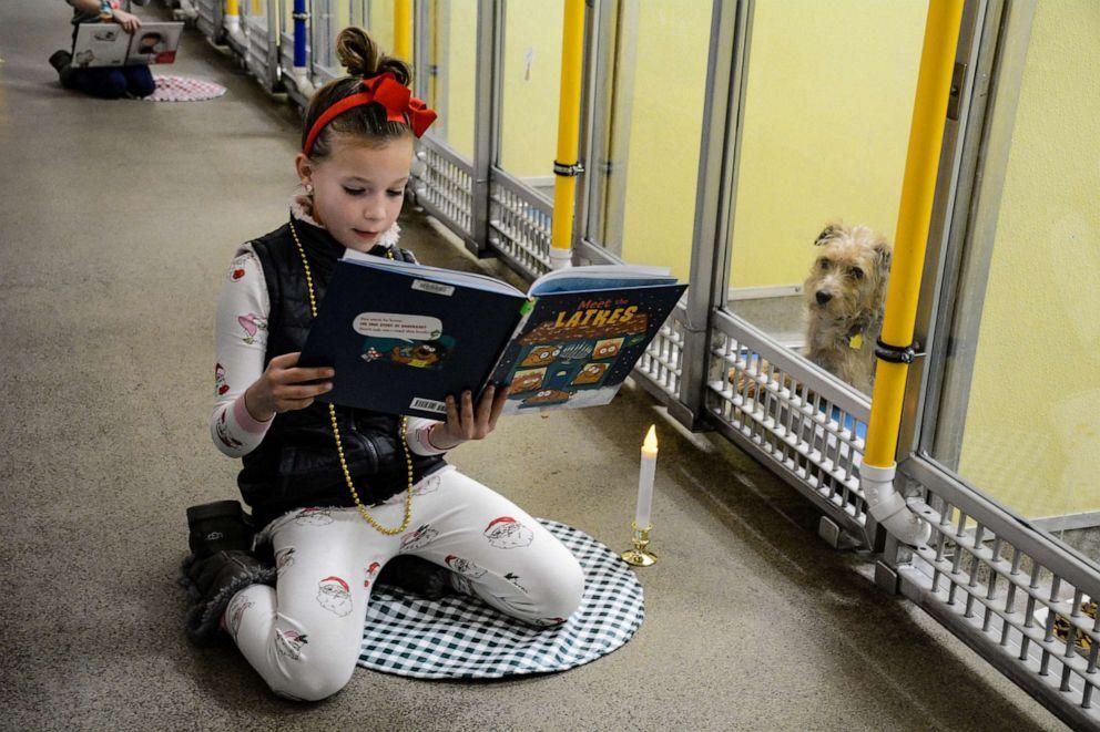 shelter-dog-reading-03-ht-jef-191211_hpEmbed_3x2_992.jpg