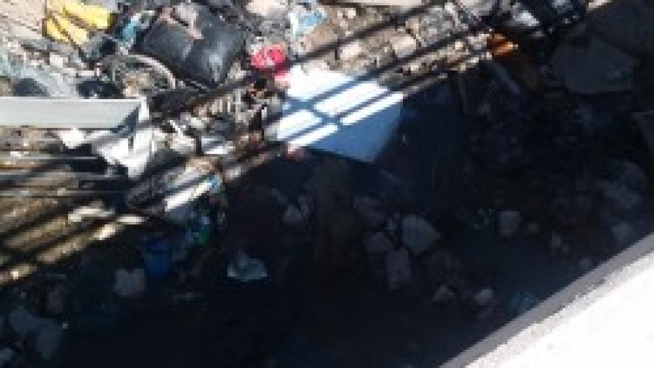 Trash in Wash 2