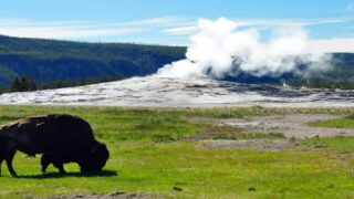 You Could Live And Work In Yellowstone National Park This Fall