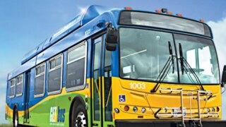 Get Bus