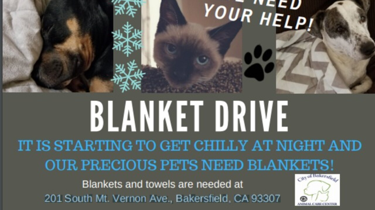 Blankets needed at Animal Care Center in Bakersfield