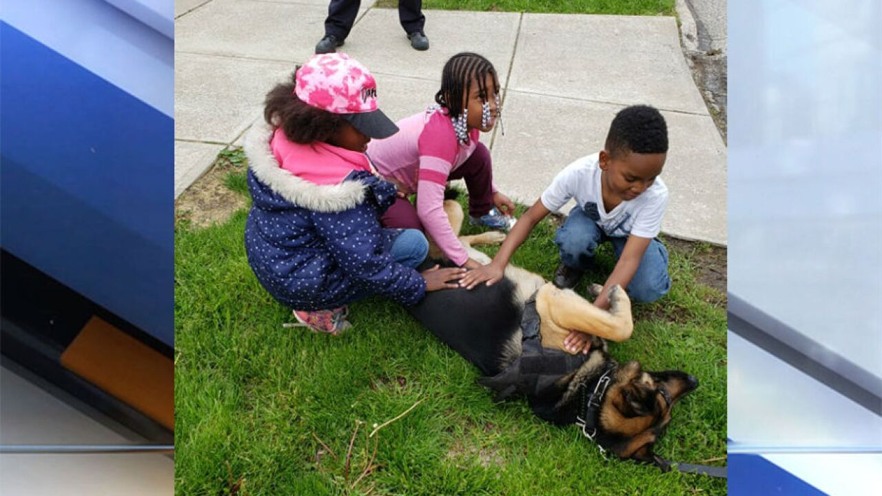 Parma kids play with police K9