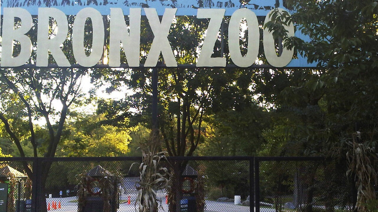 Bronx Zoo apologizes for 'unconscionable racial intolerance' in zoo's past