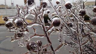 Ice storm shuts down travel in the Central US