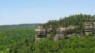 Northern Kentucky University student dies in fall at Red River Gorge