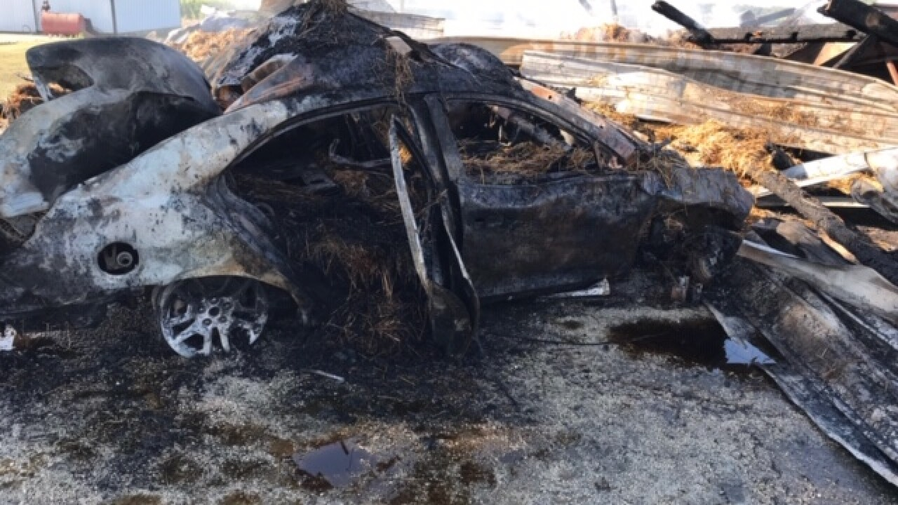 Multiple calves die after car crashes into barn causing fire