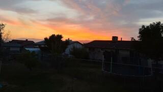 Bart - Sunrise.jpg