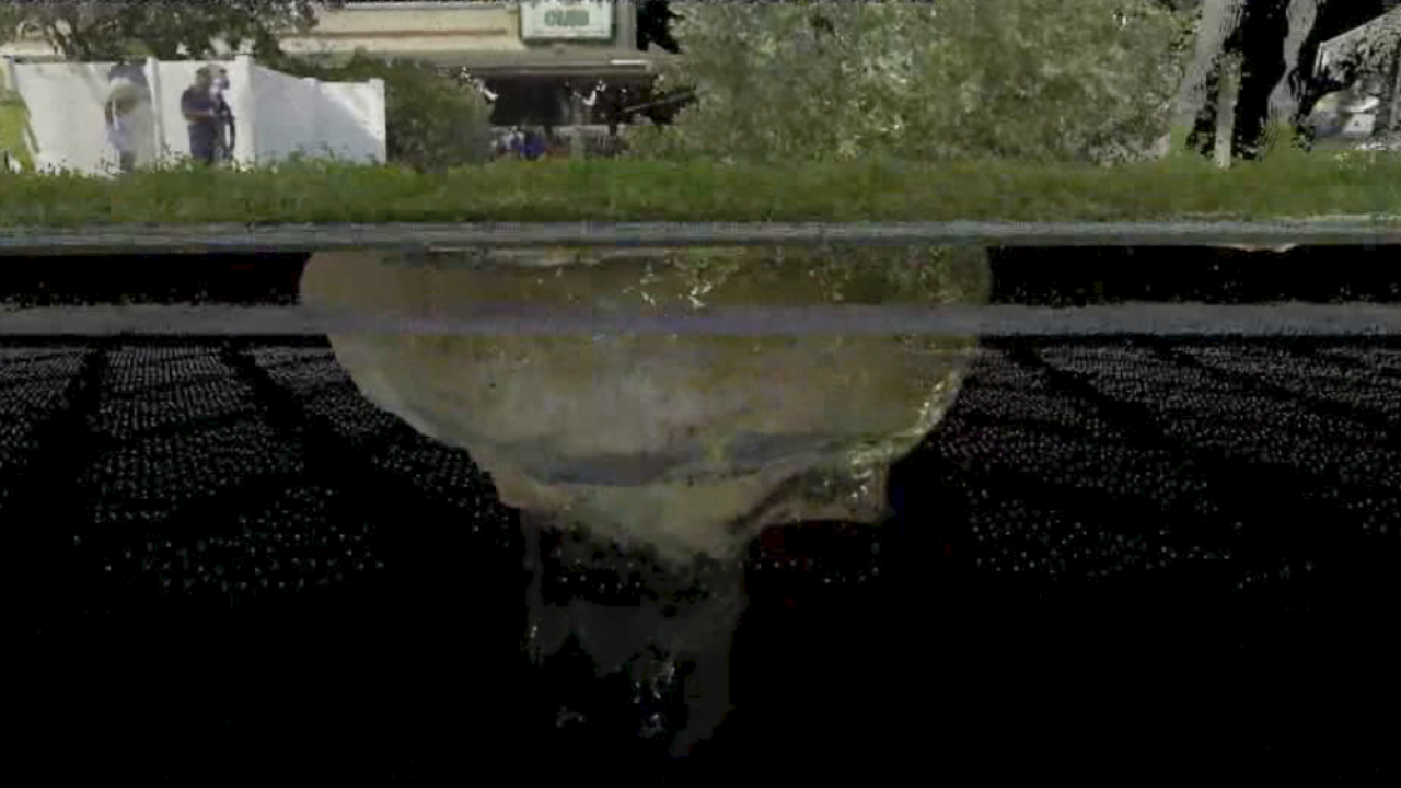 USF-Pasco-County-sinkhole-scan.png