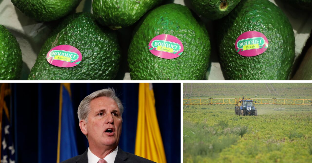 Ag Report: Rep. Kevin McCarthy promotes Kern County farmers